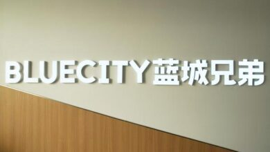 Photo of The revenue of 2q20 was 247.4 million yuan, with a year-on-year increase of 32.2% From Blue City brothers