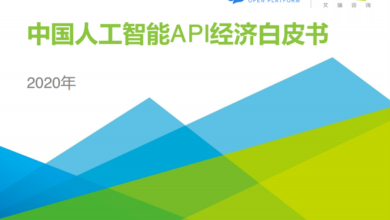 Photo of API economic white paper of China artificial intelligence in 2020 From IResearch consulting
