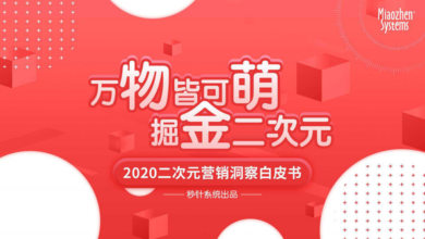 Photo of 2020 secondary marketing insight white paper From Miaozhen Systems