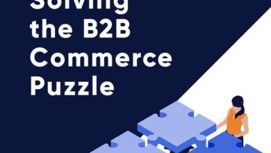 Photo of Solving B2B e-commerce problems From Elastic Path