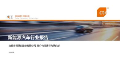 Photo of New Energy Vehicle Industry Report From CTR