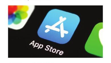 Photo of App store global report in 2019 From Apple