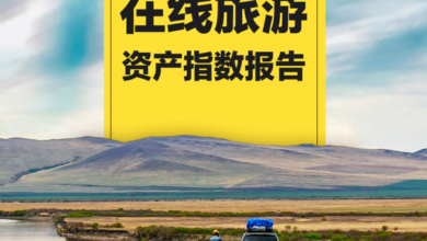 Photo of Online travel asset index report for the second quarter of 2020 From China Tourism Research Institute & wasp nest