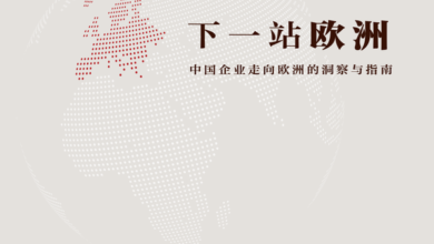Photo of Insight and guide for Chinese enterprises to go to Europe From Next stop Europe