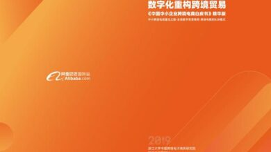 Photo of White paper on cross border e-commerce of Chinese SMEs From Alibaba international station