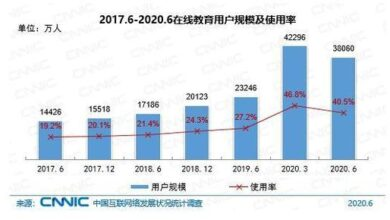 Photo of The 46th statistical report on the development of China's Internet in 2020 From CNNIC