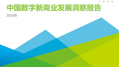 Photo of Insight report on China's digital new business development in 2020 From IResearch consulting