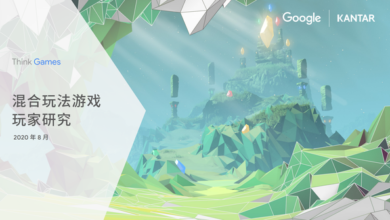 Photo of Mixed play game player Research Report From Kaidu & Google