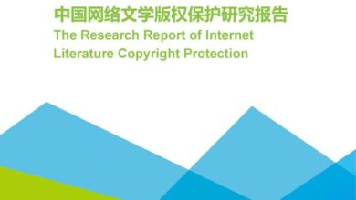 Photo of Research Report on copyright protection of Chinese network literature in 2020 From IResearch consulting