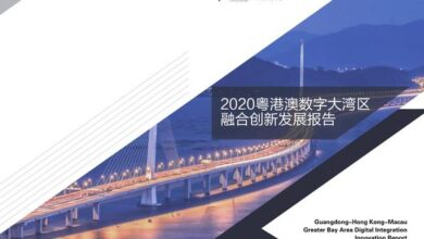 Photo of 2020 Guangdong Hong Kong Macao digital Bay area integration innovation development report From Ali Research Institute & 21st Century Economic Research Institute