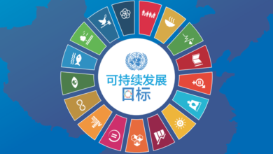 Photo of China action 2020 From Charity and sustainable development