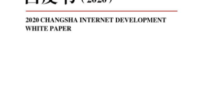 Photo of White paper on Internet development in Changsha in 2020 From Yiou think tank