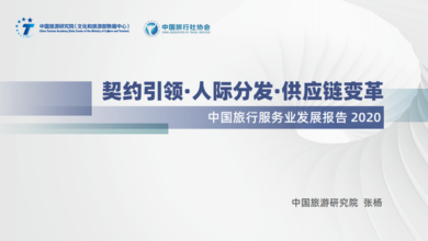 Photo of Report on the development of China's travel service industry in 2020 From China Tourism Research Institute