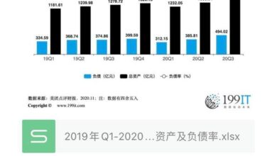 Photo of Assets and liabilities ratio of meituan review from Q1, 2019 to Q3, 2020