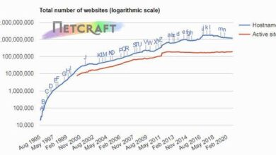 Photo of November 2020 web server survey data nginx and Apache maintain a dominant position From Netcraft