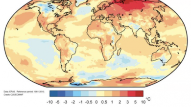Photo of It will be one of the three warmest years since 2020 From world meteorological organization