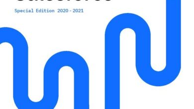 Photo of Salesforce report 2020-2021 From Bluewolf