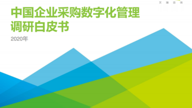 Photo of Research white paper on digital purchasing management of Chinese enterprises in 2020 From IResearch consulting