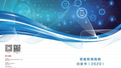 Photo of Smart connect index 2020 white paper From Xinhua 3