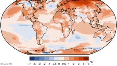 Photo of 2020 is the hottest year on record, even with the record of 2016