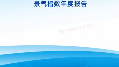 Photo of 2020 China blue collar employment market prosperity index Annual Report From 58 in the same city