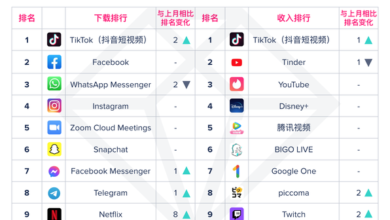 Photo of Top global & China Mobile Applications index in December 2020 From App Annie