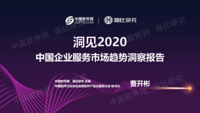 Photo of Insight report on the trend of China's enterprise service market in 2020