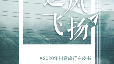 Photo of 2020 tiktok travel creator's ecological white paper From Huge amount of calculation