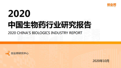 Photo of China Biopharmaceutical Industry Research Report 2020 From Entrepreneur