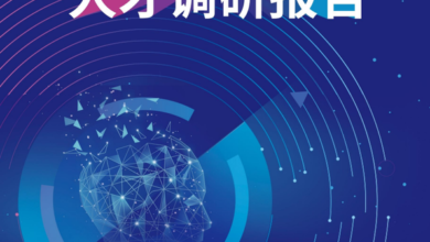 Photo of 2020 China computer vision talent Survey Report From Deloitte Consulting & Jishi