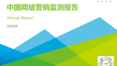 Photo of China's e-marketing monitoring report in 2020 From IResearch consulting