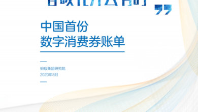 Photo of China's first digital voucher bill From Ant group research institute