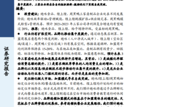 Photo of In depth report of China's brine products industry in 2020 From Guotai Junan