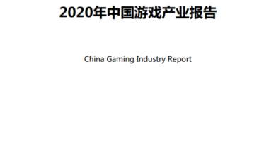Photo of China's game industry report in 2020 From GPC
